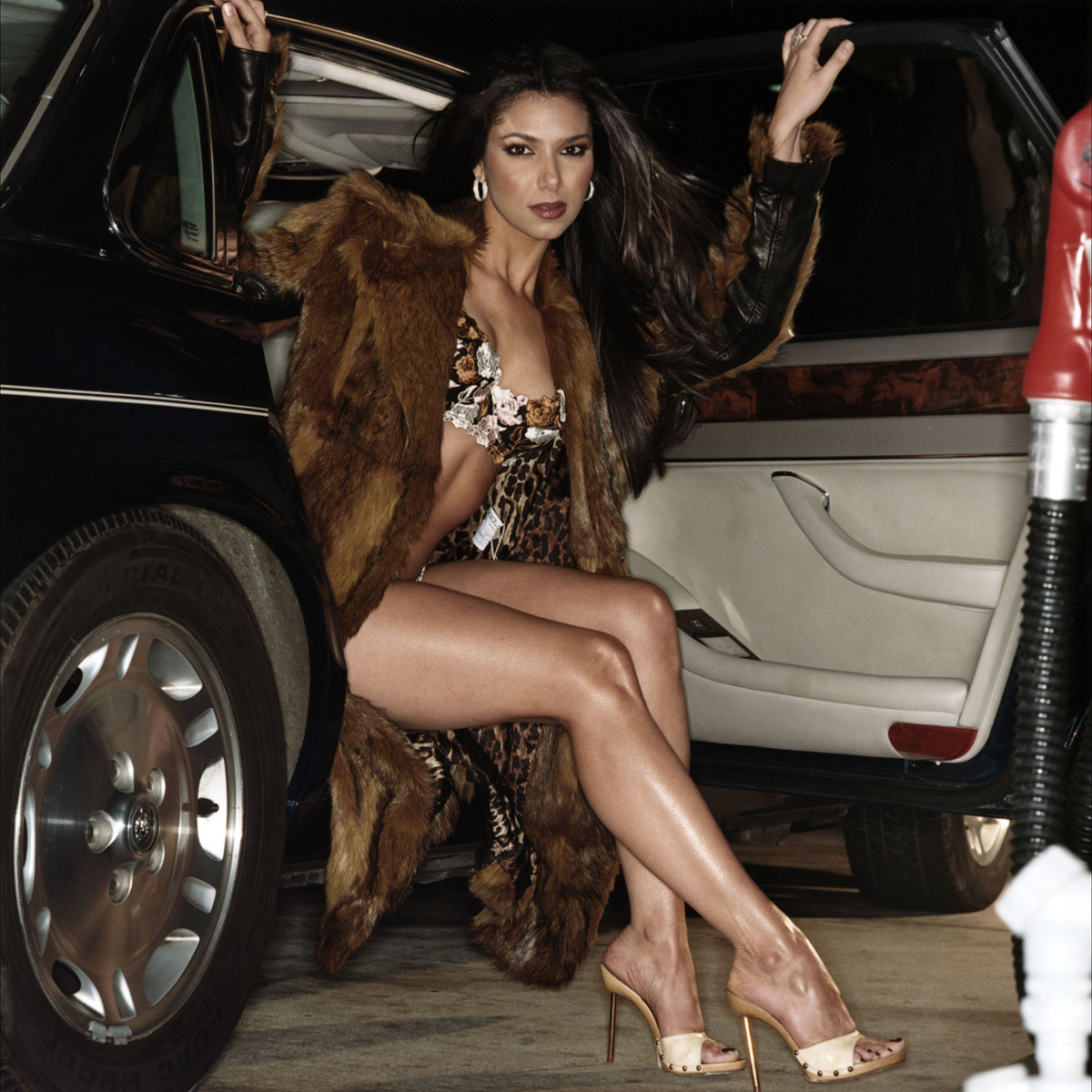 Roselyn Sanchez legs